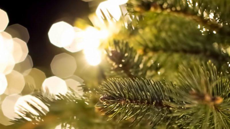Weihnachtskonzerte 2018