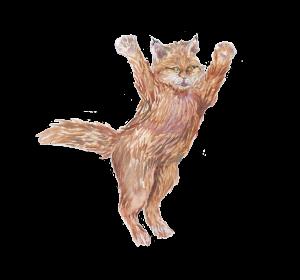 KatzePoster